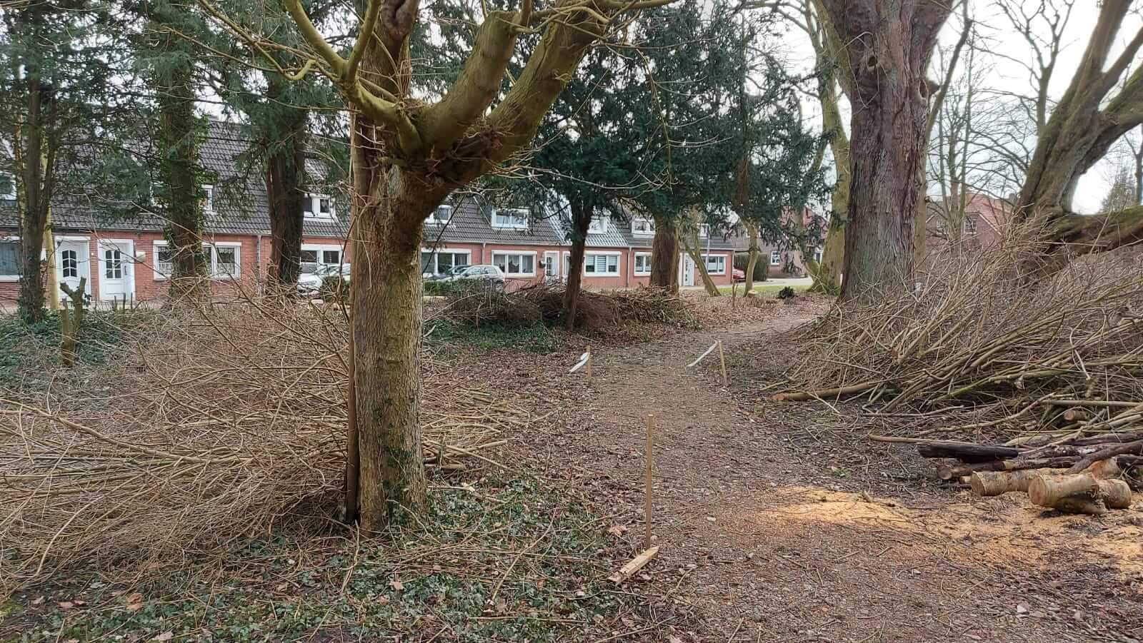 Cassens Park im Februar 2021