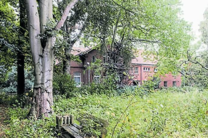 Kein Durschkommen: Blick über verwilderte Beete auf die Cassesns-Villa. Bild: Eric Hasseler